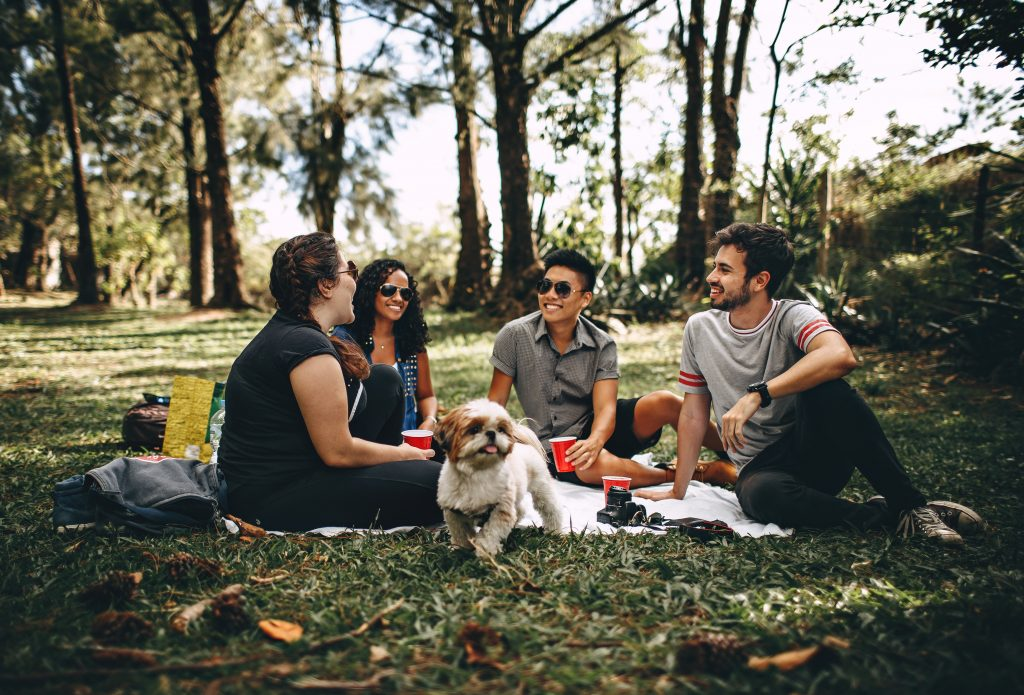 people making friends while in a picnic